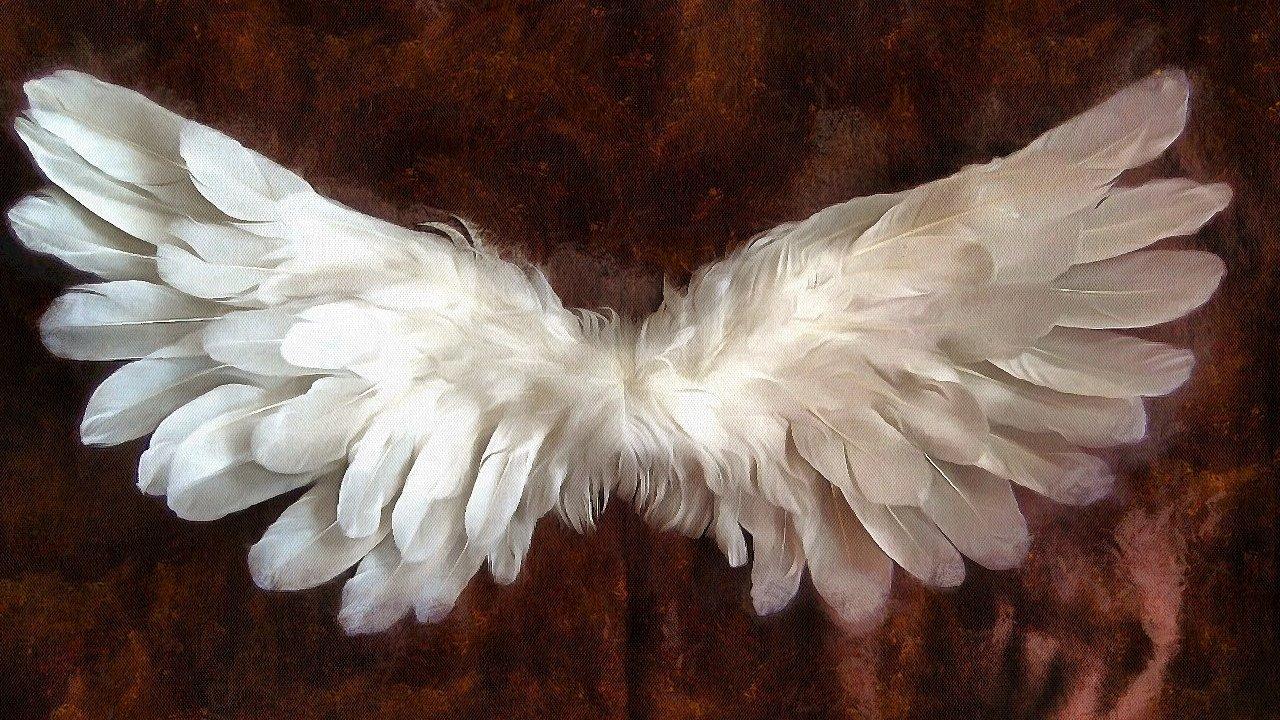 Karty Anielskie. Skontaktuj się z aniołami